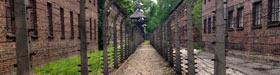 Les traces de l'horreur à Auschwitz - photoreportage